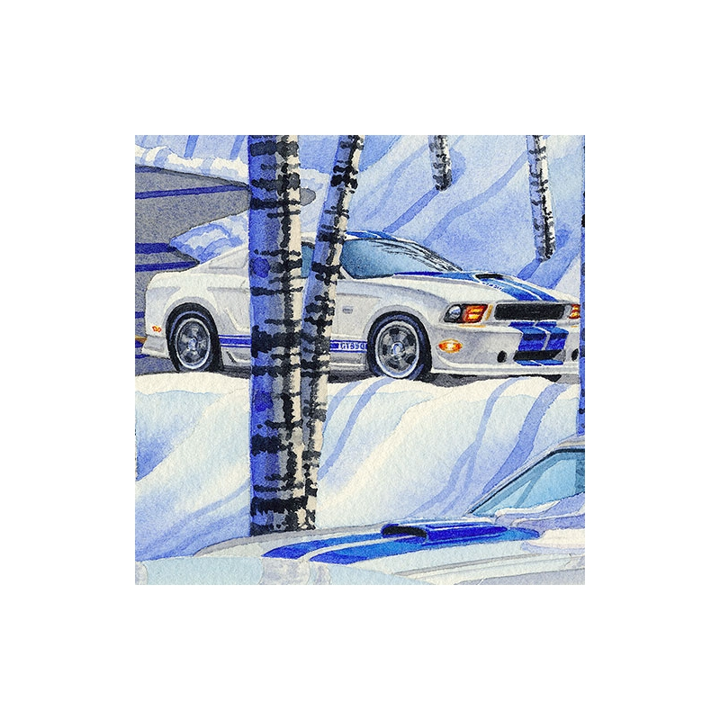 Detail: 2011 winding down a wintery road.