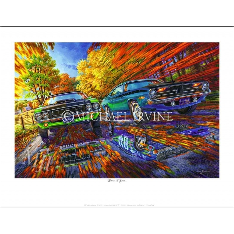 Limited Edition Print - signed/numbered by Artist Michael Irvine